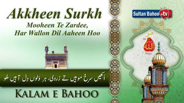 Kalam e Bahoo   Akkheen Surkh Mooheen Te Zardee   15