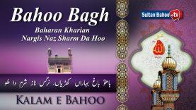Kalam e Bahoo Bahoo Bagh Baharan (23/201)