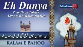 Kalam e Bahoo | Eh Dunya Zaan Hazee Paletee | 05