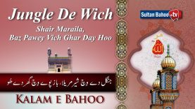 Kalam e Bahoo | Jungle De Wich Shair Maraila | (62/201)