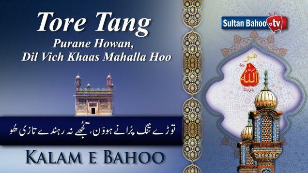 Kalam e Bahoo | Tore Tang Purane Howan | 45