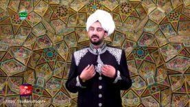 Kalam e Bahoo  |  Zahir Vekhan Jani Tayeen  | (119/201)