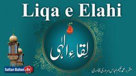 Speech: Liqa e Elahi