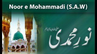 Speech: Noor e Mohammadi (S.A.W)