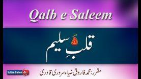 Speech: Qalb e Saleem