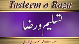 Speech: Tasleem o Raza