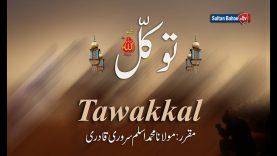 Speech: Tawakkal