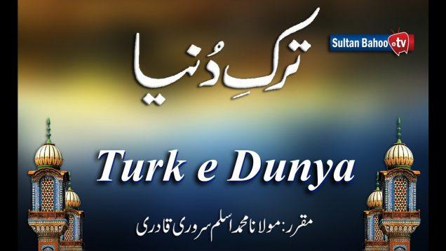 Speech: Turk e Dunya