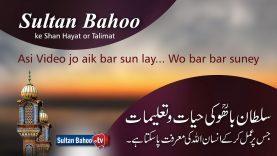 Sultan Bahoo ke Shan Hayat or Talimat
