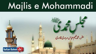 Speech: Majlis e Mohammadi