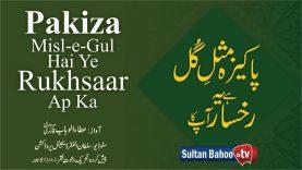 Pakiza Misl-e-Gul Hai Ye Rukhsaar Ap Ka