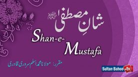 Speech | Shan e Mustafa