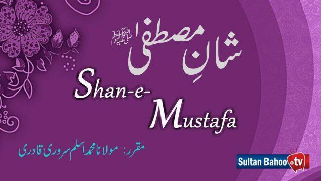 Speech | Shan e Mustafa