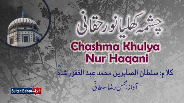 Kalam Pir Abdul Ghafoor Shah = Chashma Khulya Noor Haqani