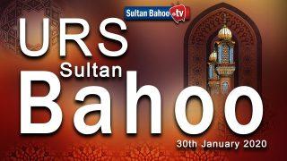 Sultan Bahoo