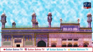 Sultan Bahoo News January 2020