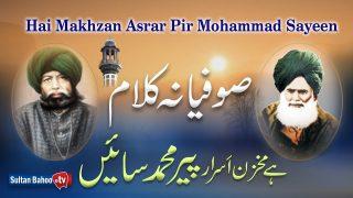 New Sufi Kalam 2020 | Latest Sufiana Kalam |Kalam Pir Bahadur Ali Shah